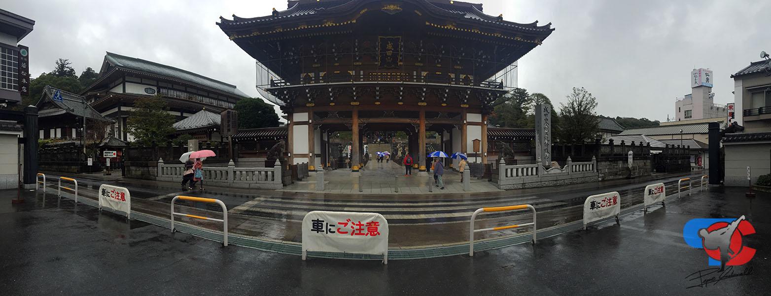 Viaje a Okinawa - Visita a Narita